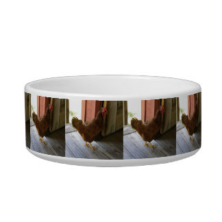 Country Cat Food Bowls