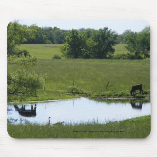 Country Reflection Mouse Pad