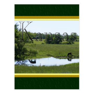 Country Reflection Postcard
