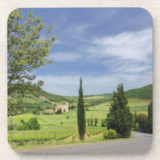 Country road curving between cypress trees in beverage coaster