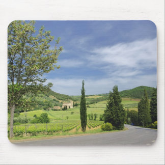 Country road curving between cypress trees in mouse pad