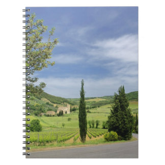 Country road curving between cypress trees in notebook