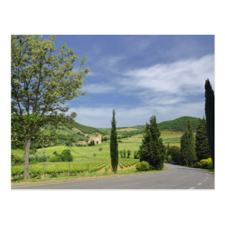 Country road curving between cypress trees in postcard