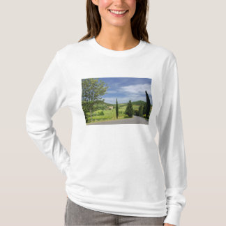 Country road curving between cypress trees in T-Shirt