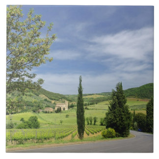 Country road curving between cypress trees in tile