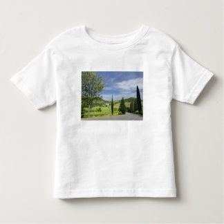 Country road curving between cypress trees in toddler t-shirt