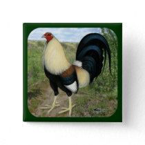 Country Road Gamecock Pinback Button