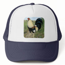Country Road Gamecock Trucker Hat