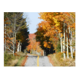 Country Road High Peaks Lake Placid Autumn Leaves Postcard