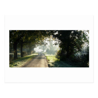 Country Road in Cheshire Postcard