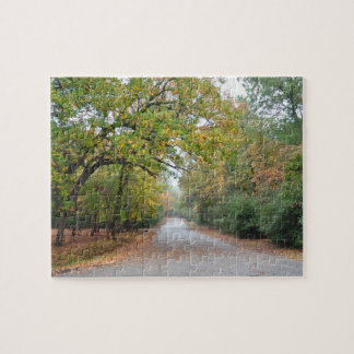 Country Road in Fall Jigsaw Puzzles