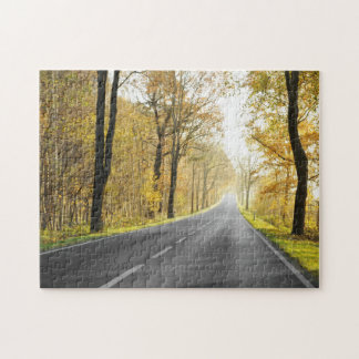 Country Road In Morning Jigsaw Puzzle