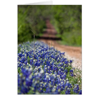 Country Road in Spring notecard Cards