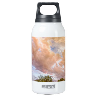 Country Road Into The Storm Front Thermos Water Bottle
