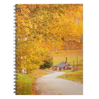 Country Road Leading To The Sugar Mill Spiral Notebook