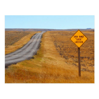 Country Road Open Range Wyoming Western Postcard