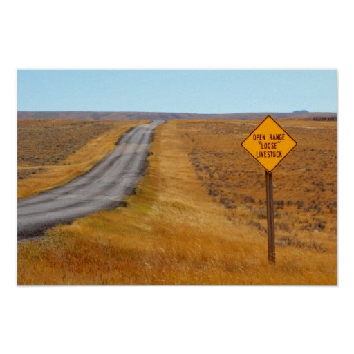 Country Road Open Range Wyoming Western Poster