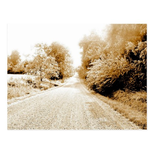 Country Road Postcard