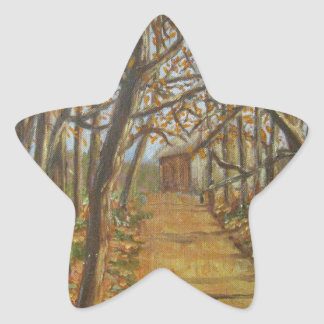 Country Road Star Sticker
