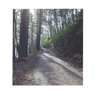 Country road through forest notepad