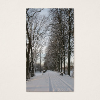 Country Road with Trees and Snow Photo Card