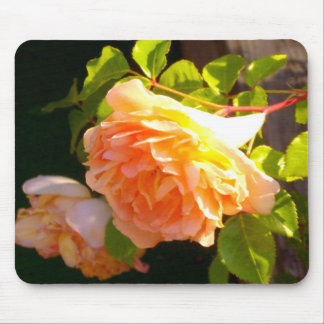 Country Rose Mouse Pad