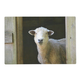 Country Sheep Placemat