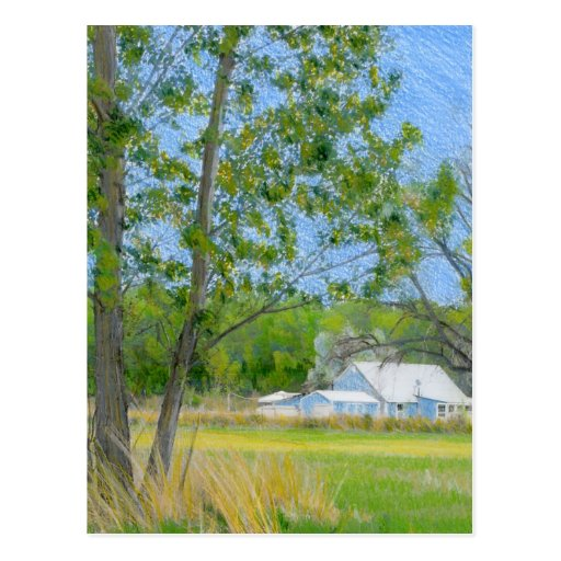 Country Spring Colored Pencil Drawing Postcard