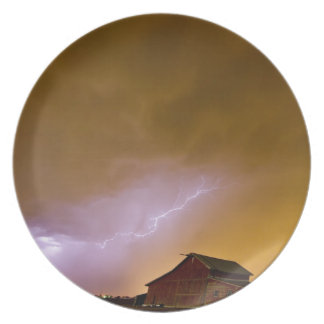 Country Spring Storm Party Plate
