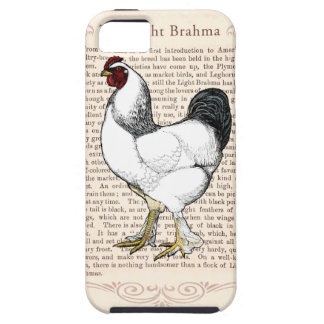 Country Style Rooster Light Brahma Chicken iPhone SE/5/5s Case