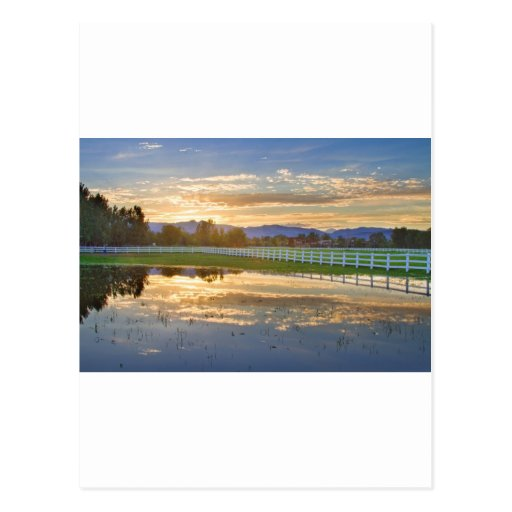 Country Sunset Reflection Postcards