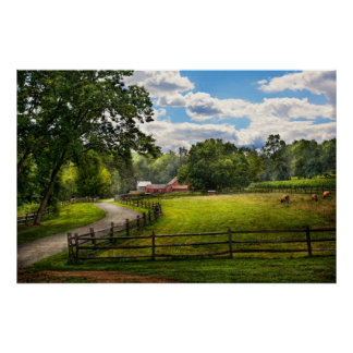 Country - The pasture Posters