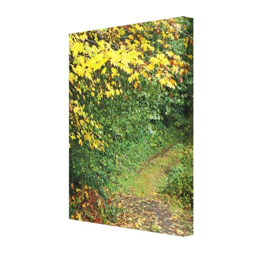 Country View Wrapped Canvas Canvas Print
