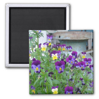 Country Violets Magnet