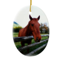 Country Western Horse and Fence Ceramic Ornament