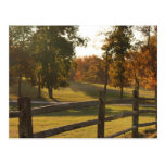 Countryside Fence Postcard