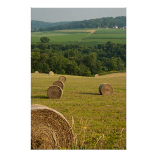 Countryside Hay Bales Poster