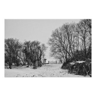 Countryside in the Snow Poster