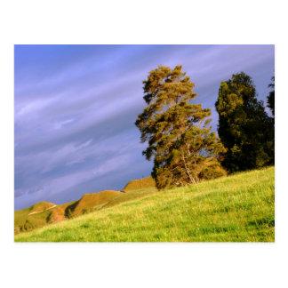 Countryside Landscape Postcard