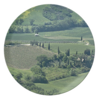 Countryside near Montepulciano, Val d'Orcia, Dinner Plate