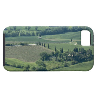 Countryside near Montepulciano, Val d'Orcia, iPhone SE/5/5s Case