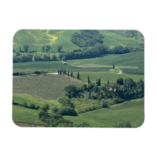 Countryside near Montepulciano, Val d'Orcia, Magnet