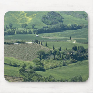Countryside near Montepulciano, Val d'Orcia, Mouse Pad