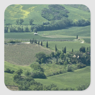 Countryside near Montepulciano, Val d'Orcia, Square Sticker