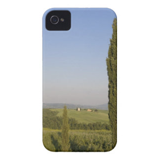 Countryside near Pienza. Val d'Orcia, Siena iPhone 4 Case-Mate Case