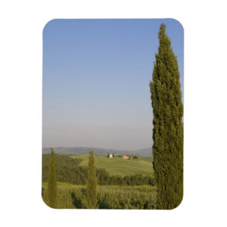 Countryside near Pienza. Val d'Orcia, Siena Magnet