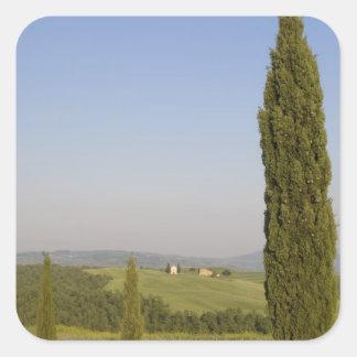 Countryside near Pienza. Val d'Orcia, Siena Square Sticker