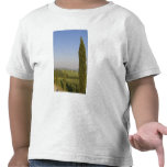 Countryside near Pienza. Val d'Orcia, Siena T Shirt