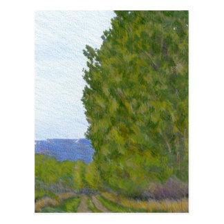 Countryside Rural Colorado Landscape Postcard