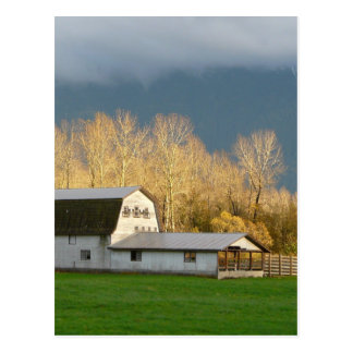 Countryside Scene Postcard